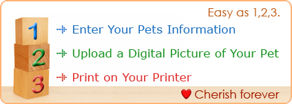 Go pet certificates yelopaper Gallery